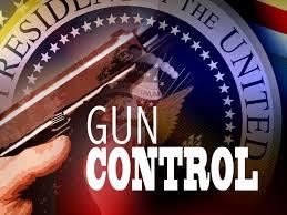 gun control 8