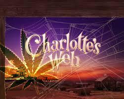 Medical Marijuana3